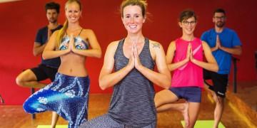 Yoga und QiGong, Auster, Kurse, Sport, 22.08.2018